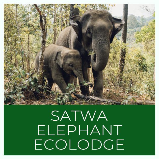 Satwa Elephant Ecolodge Indonesia