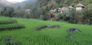 Sustainable environment nearby ecolodges
